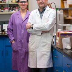 Nieuw materiaal opent de weg naar efficiënte niet-giftige accu's